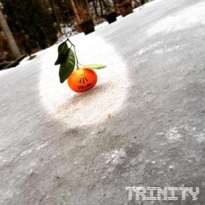 Trinity (FLAC)